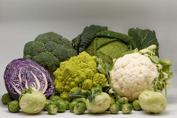 Cauliflower, Brussel sprout, green cabbage, broccoli and kohlrabi are all cultivars of the same plant species, Brassica oleracea and a result of artificial selection for either leaves, stems, buds or flowers. Attribution: Coyau / Wikimedia Commons / CC BY-SA 3.0