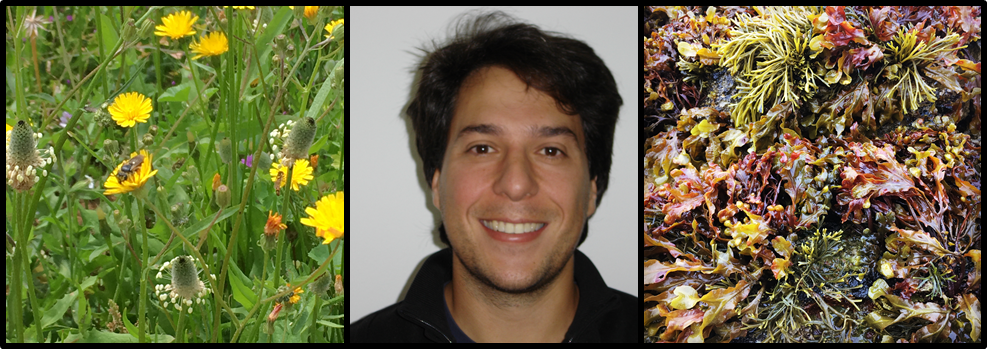 AE Profile: Oscar Godoy – Functional Ecologists – A blog for