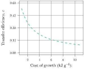 Plot: Relationship between cost of growth and efficiency of energy transfer for an active young adult following the theory in Barneche & Allen (2018).