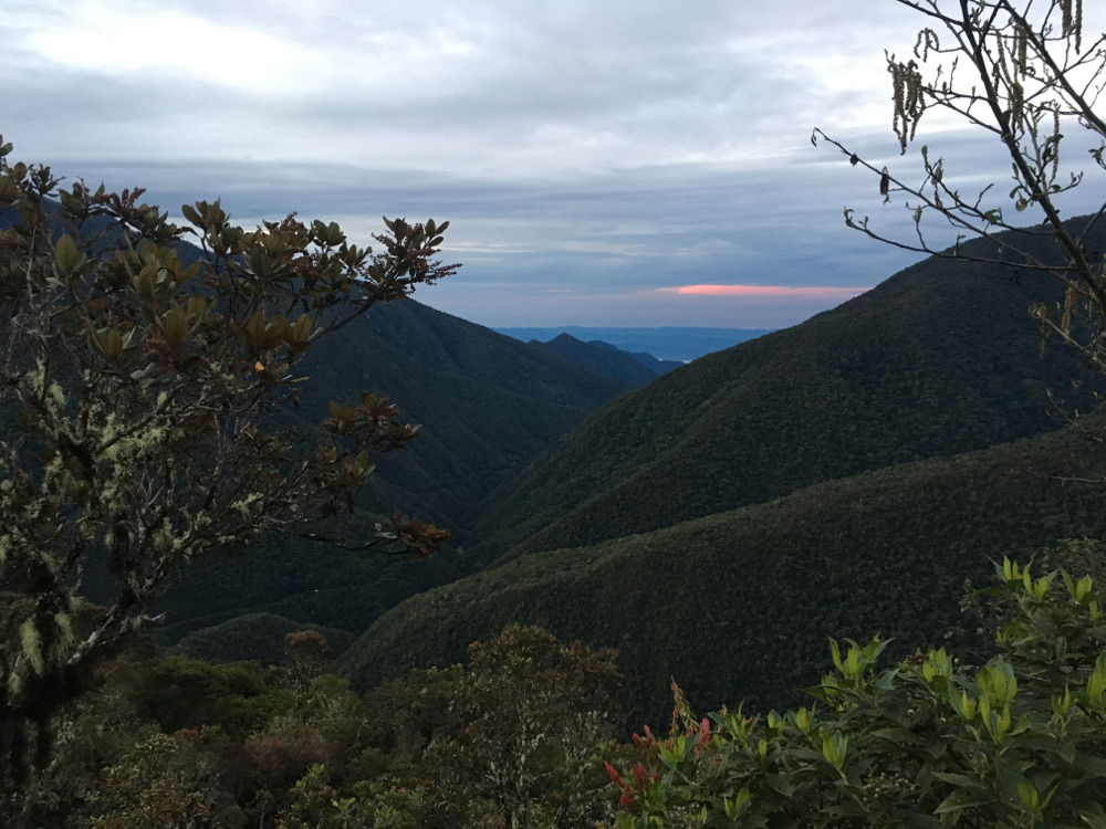 A view from our high elevation study site, Wayqecha, looking down the Andes towards our lowland site, Pantiacolla, in the Amazon