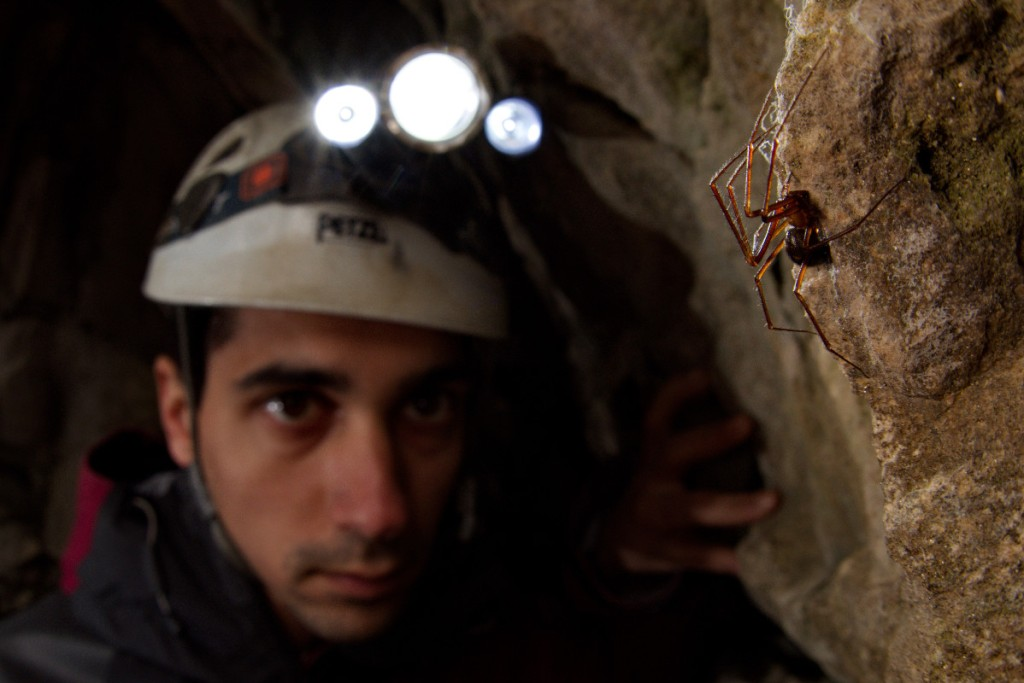 Stefano Mammola doing fieldwork in a cave. Photo by courtesy of Francesco Tomasinelli (http://www.isopoda.net/).