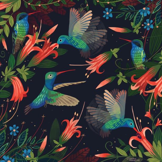 Hummingbirds. Credit Sandhya Prabhat