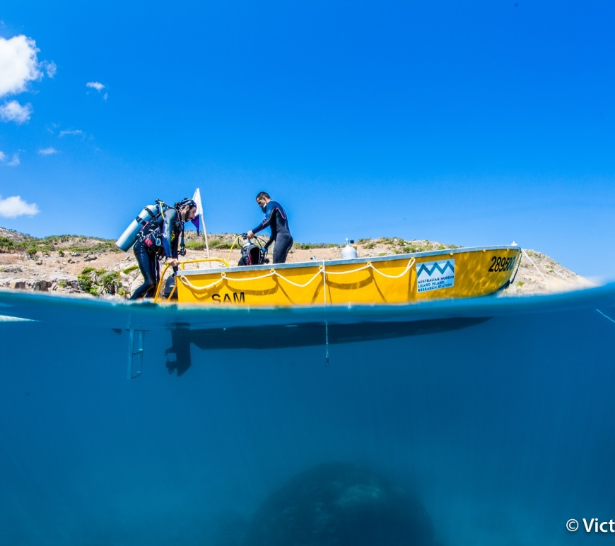 Field work for this study was done at Lizard Island, on the Great Barrier Reef, Australia, where the authors were lucky to have access to great infrastructure and exceptional autonomy. Photo by Victor Huertas.