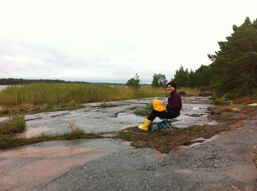 Ana georeferencing larval nests in a rainy day of summer 2015. Photo credit: Paula Salonen