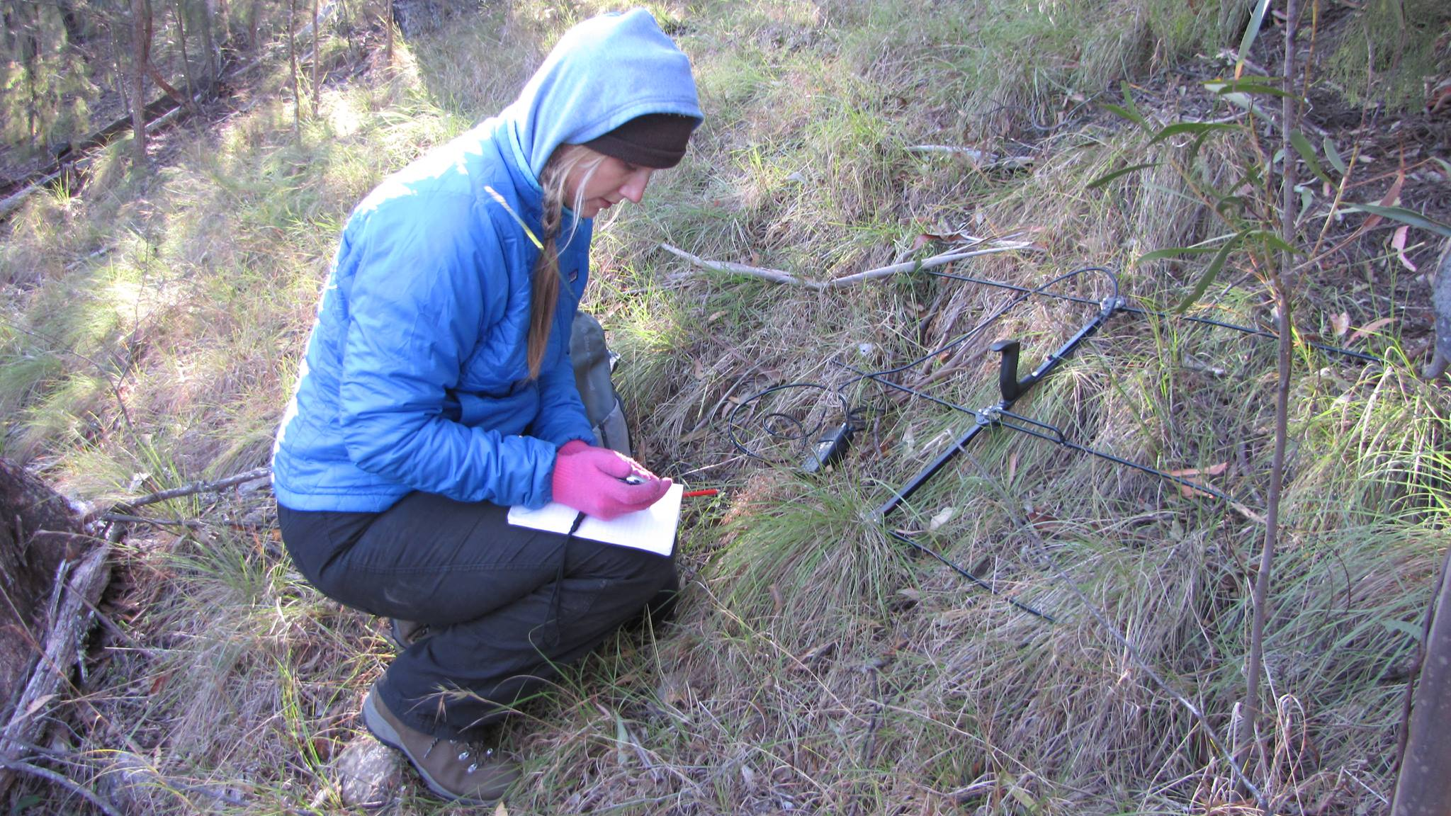 Anna collecting data on bats in Guy Fawkes River National Park in Australia.