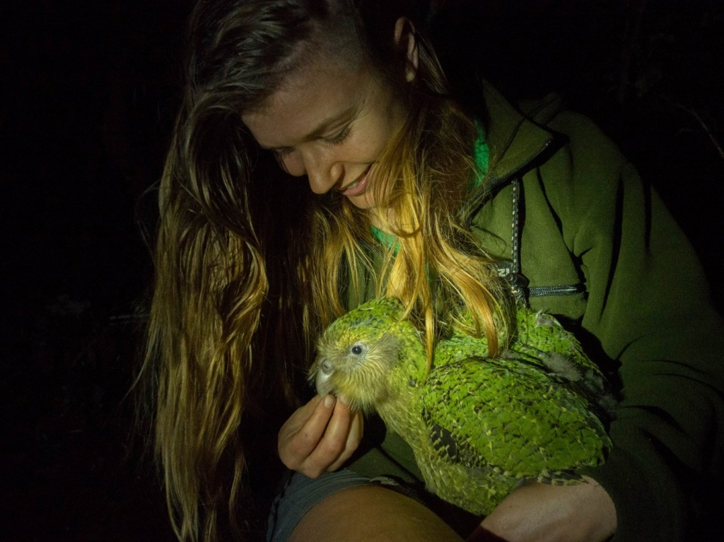 Jo Carpenter with a kakapo, a native seed predator endemic to New Zealand. Credit: Theo Thompson