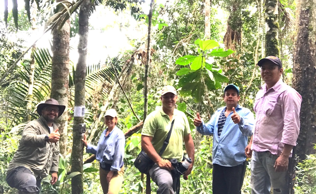 Installing camera traps for mammals with the research team (Jorge Ari Noriega, Cristina Tingle, Carlos Valderrama, and two coffee farmers of the zone).
