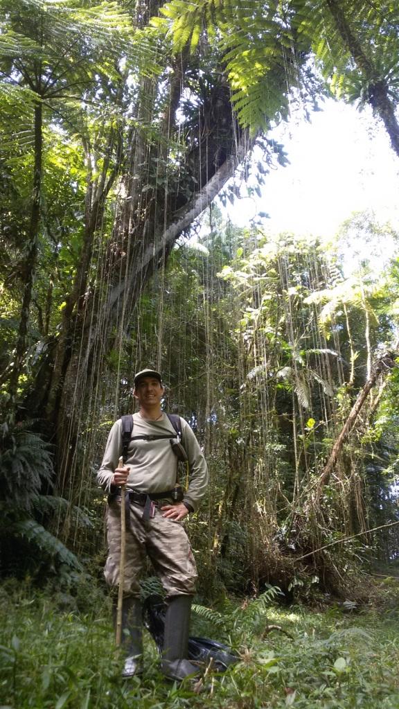 Nacho Villar in the Brazilian Atlantic Forest