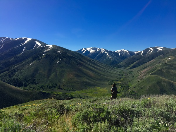 The lead author hiking from one site to another in the Pioneer Mountains of Idaho.