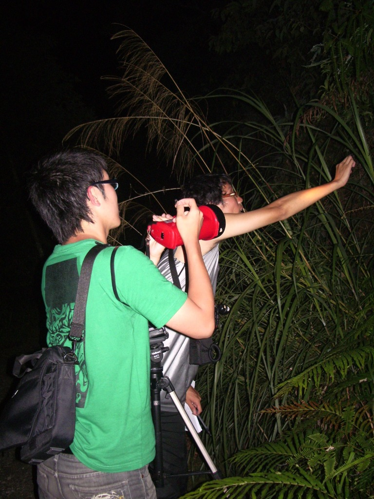 Po Peng (left) and his colleague - Szu-Wei Chen (right; co-author) were conducting field manipulation in Sanyi Township, Miaoli County, Taiwan.