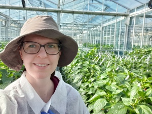 Rebecca at work in the glasshouse in Western Sydney