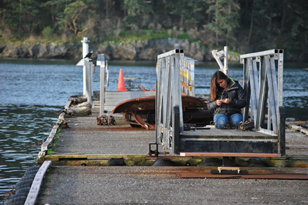 Michelle McCartha counting byssal threads on the floating dock. (Photo credit Katie Harrington)