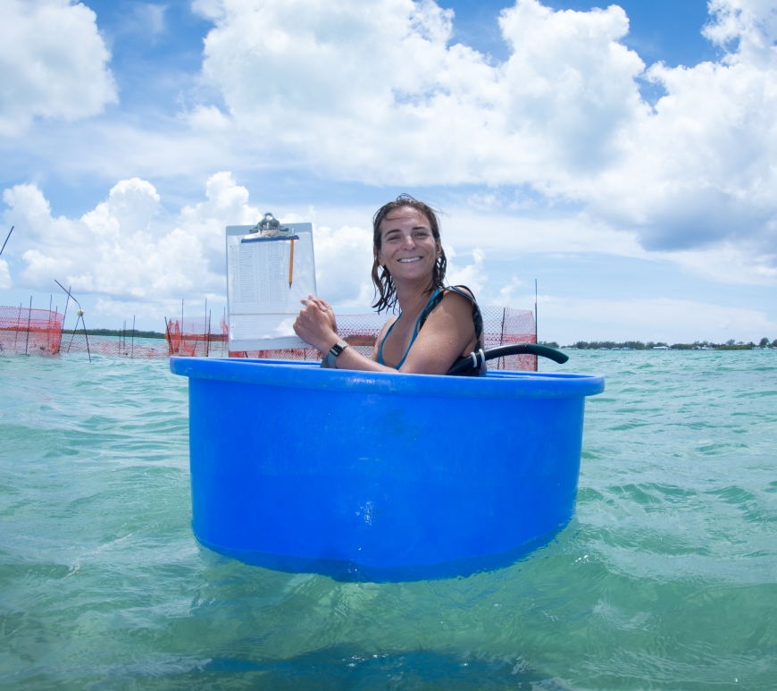 Félicie Dhellemmes floating in a shark bucket holding the last datasheet for the year